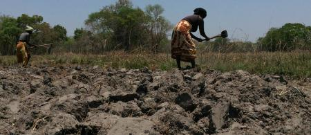 Dry land in Mozambique