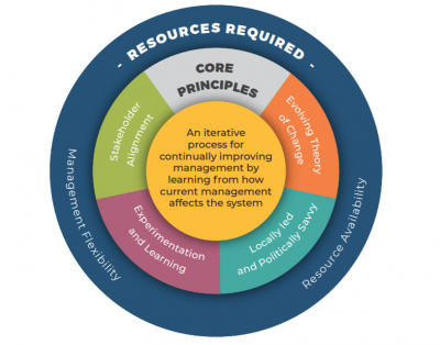 Bringing adaptive management to life: Insights from practice