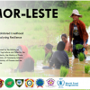 Consolidated Livelihood Exercise for Analysing Resilience Timor Leste